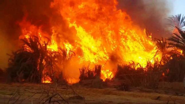حريق هائل يقضى على منازل ومحاصيل زراعية بالفاشر
